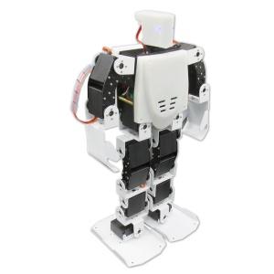 Torobot01